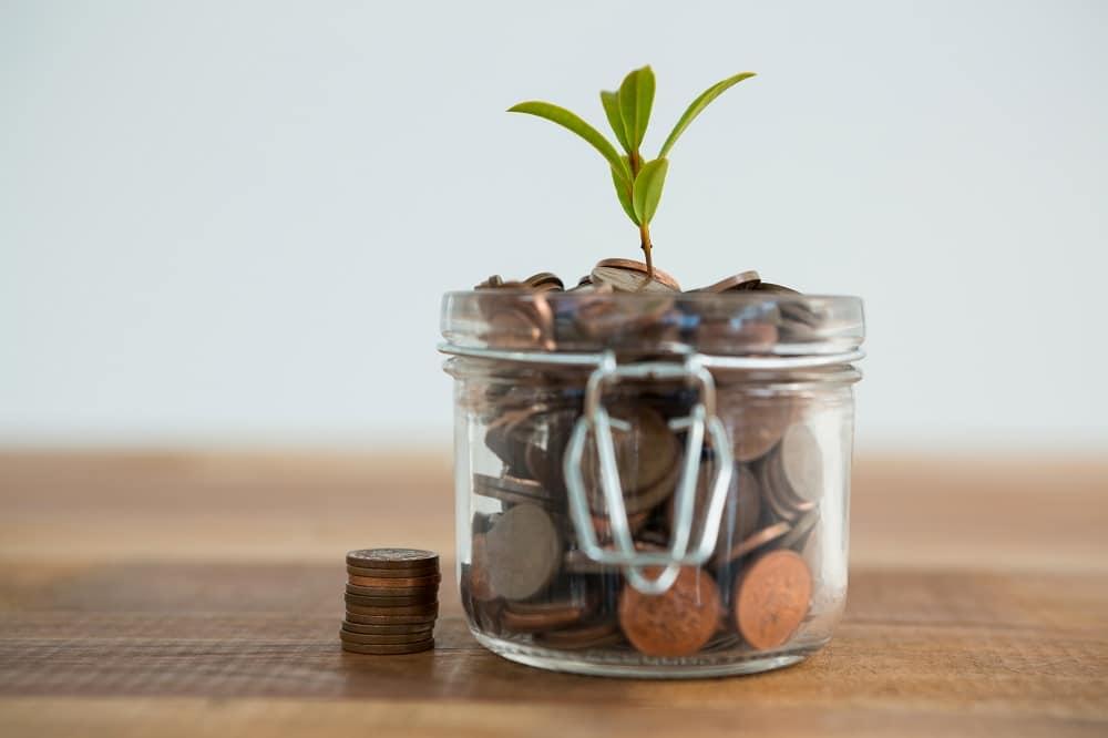 venture capital y crecimiento de empresas