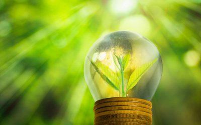 Inversiones sustentables ¿por qué son cada vez más atractivas?