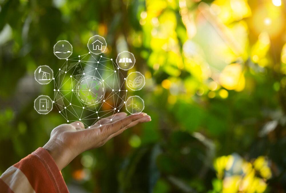 Innovaciones en agricultura sustentable para invertir