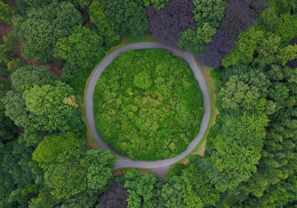 economia-verde-demanda-fondos-de-capital-privado